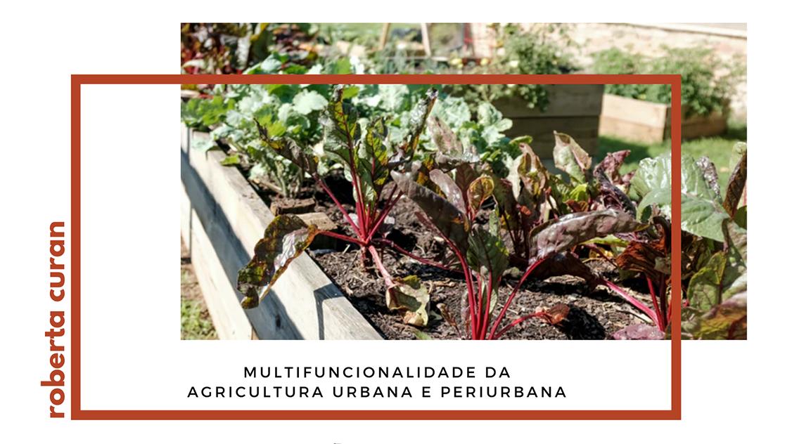 Multifuncionalidade da Agricultura Urbana e Periurbana